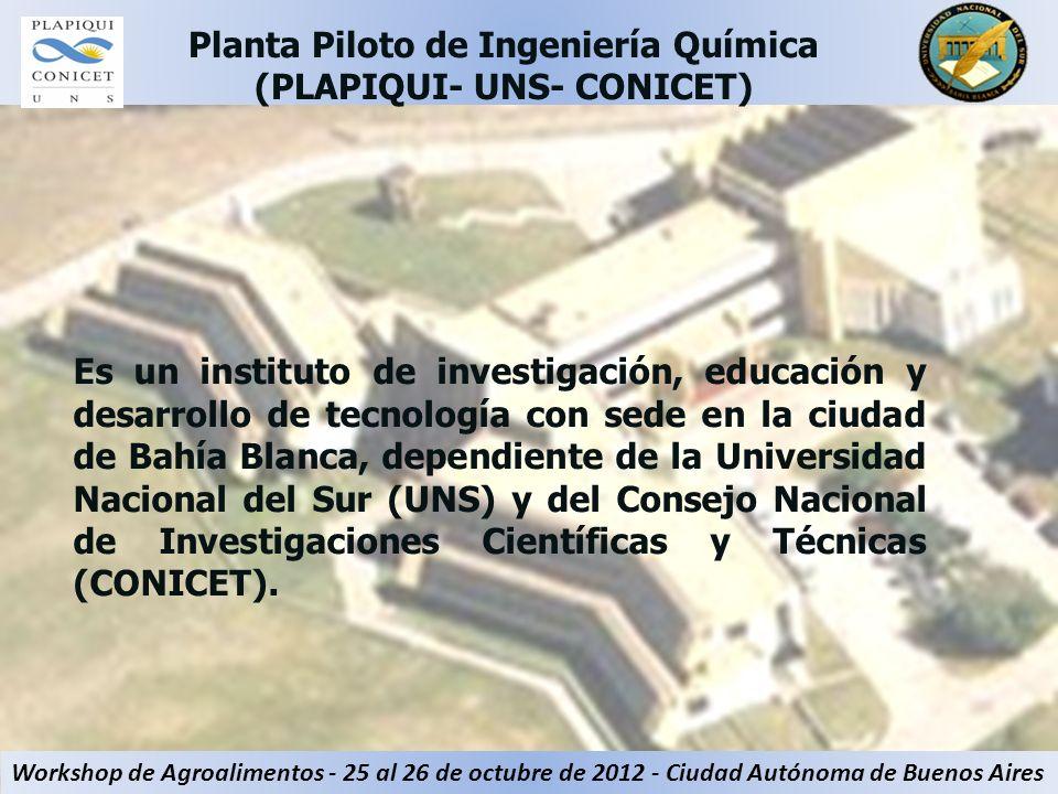Es un instituto de investigación, educación y desarrollo de tecnología con sede en la ciudad de Bahía Blanca, dependiente de la Universidad Nacional d