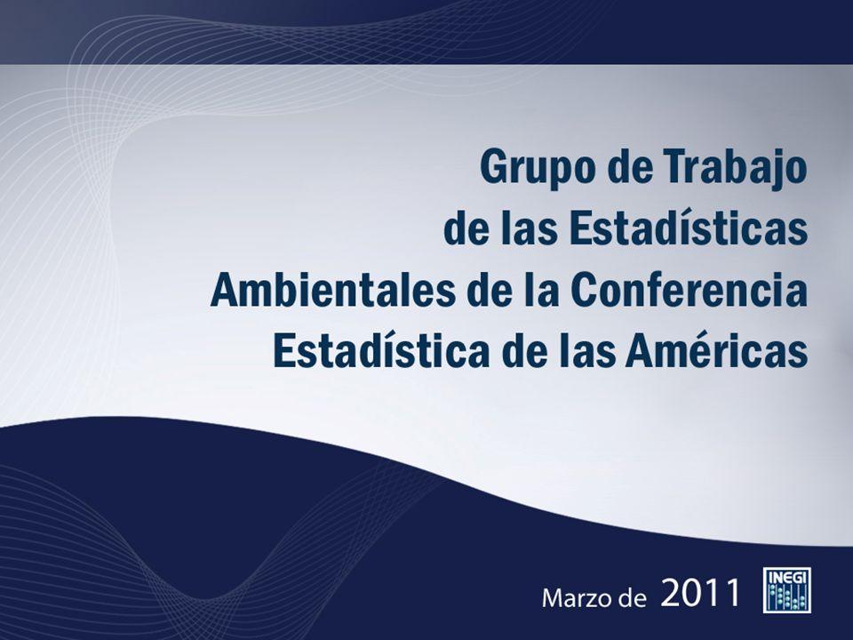 El Grupo de Trabajo de Estadísticas Ambientales se conformo en 2009 para impulsar el desarrollo de estadísticas relevantes sobre los recursos naturales y el medio ambiente y su integración en los sistemas de estadísticas nacionales de los países de América Latina y del Caribe.