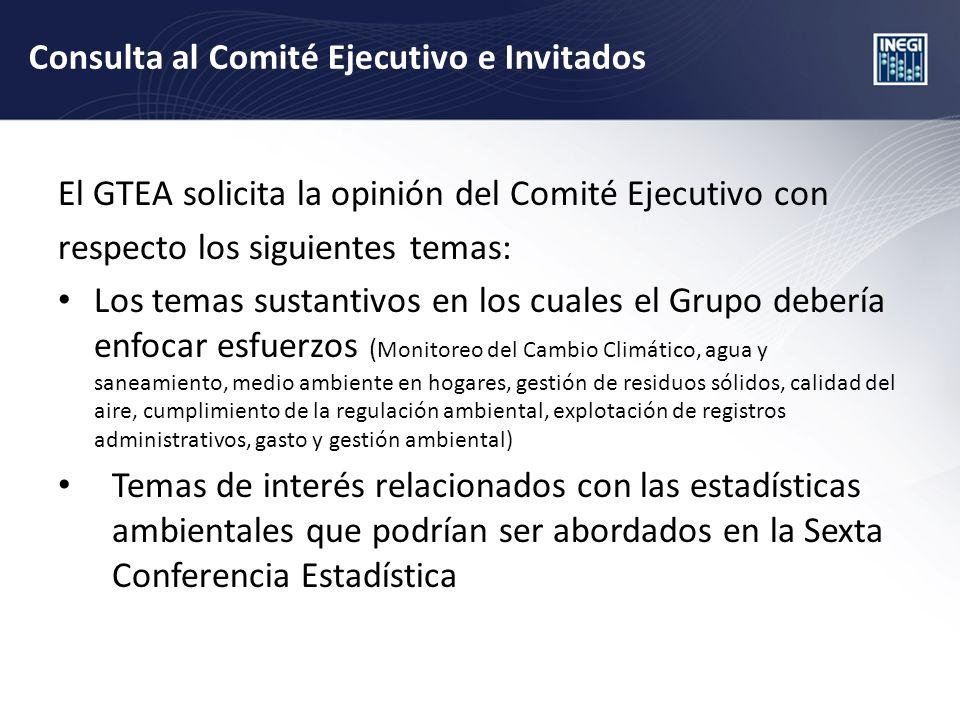 Consulta al Comité Ejecutivo e Invitados El GTEA solicita la opinión del Comité Ejecutivo con respecto los siguientes temas: Los temas sustantivos en