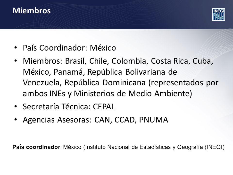 Miembros País Coordinador: México Miembros: Brasil, Chile, Colombia, Costa Rica, Cuba, México, Panamá, República Bolivariana de Venezuela, República Dominicana (representados por ambos INEs y Ministerios de Medio Ambiente) Secretaría Técnica: CEPAL Agencias Asesoras: CAN, CCAD, PNUMA País coordinador: México (Instituto Nacional de Estadísticas y Geografía (INEGI)