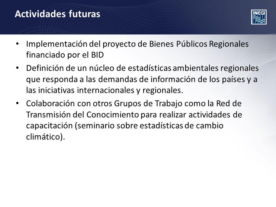 Actividades futuras Implementación del proyecto de Bienes Públicos Regionales financiado por el BID Definición de un núcleo de estadísticas ambientales regionales que responda a las demandas de información de los países y a las iniciativas internacionales y regionales.