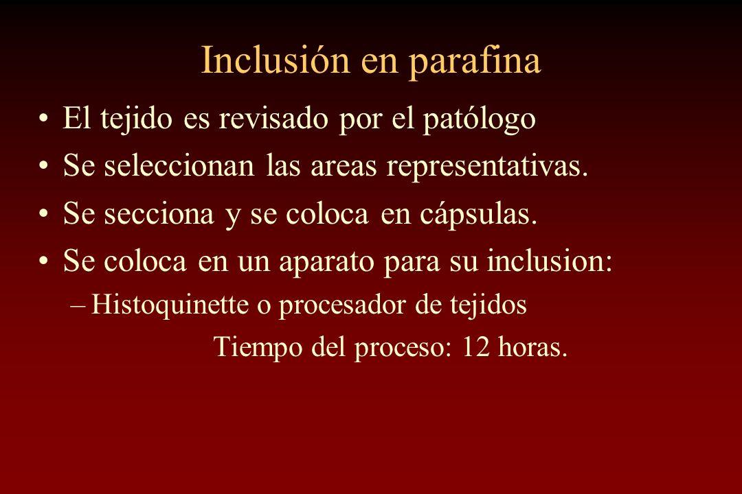 Inclusión en parafina El tejido es revisado por el patólogo Se seleccionan las areas representativas. Se secciona y se coloca en cápsulas. Se coloca e