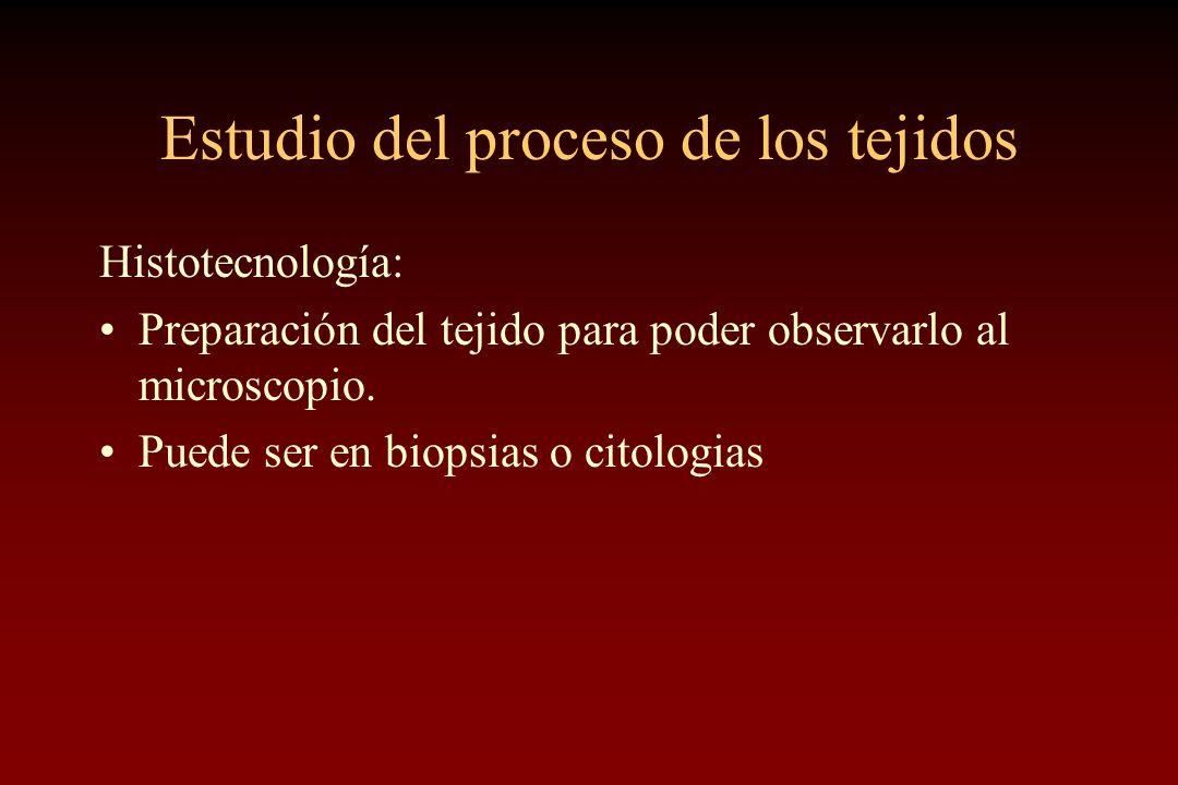 Estudio del proceso de los tejidos Histotecnología: Preparación del tejido para poder observarlo al microscopio. Puede ser en biopsias o citologias