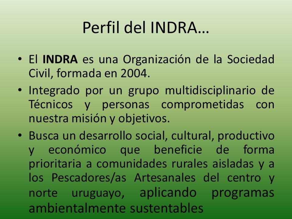Perfil del INDRA… El INDRA es una Organización de la Sociedad Civil, formada en 2004. Integrado por un grupo multidisciplinario de Técnicos y personas