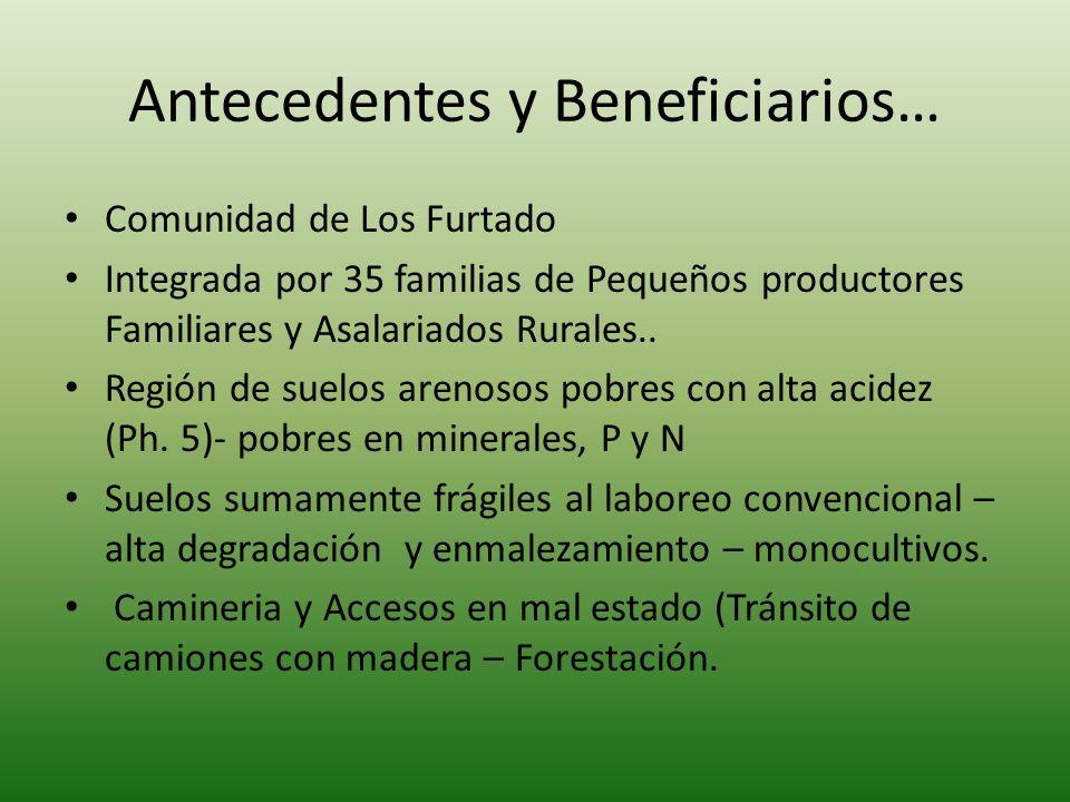 Antecedentes y Beneficiarios… Comunidad de Los Furtado Integrada por 35 familias de Pequeños productores Familiares y Asalariados Rurales.. Región de