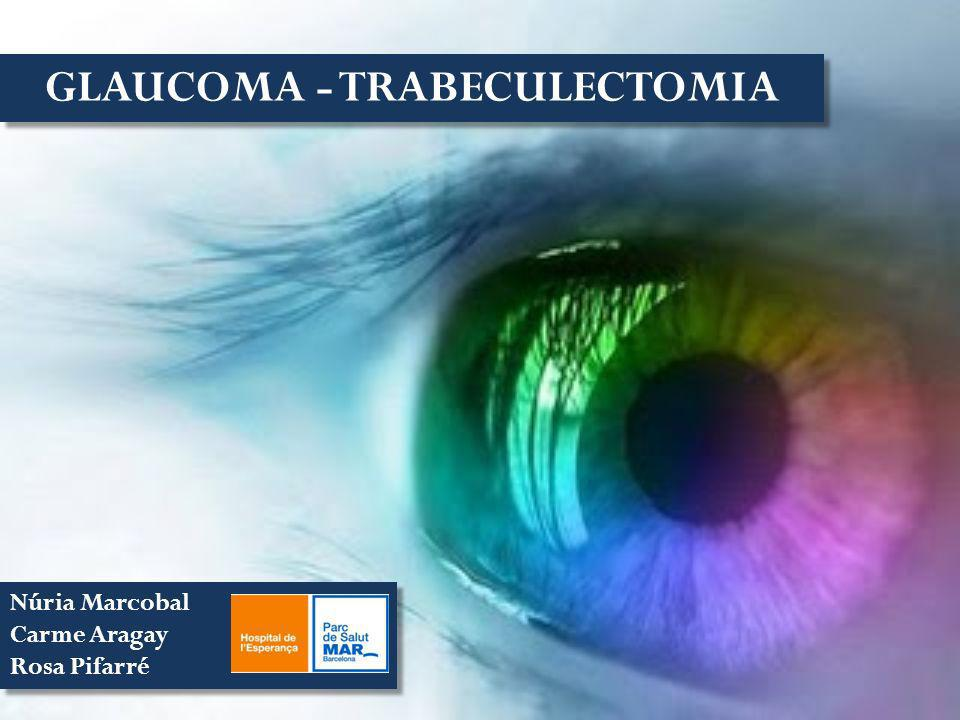 GLAUCOMA - TRABECULECTOMIA Núria Marcobal Carme Aragay Rosa Pifarré Núria Marcobal Carme Aragay Rosa Pifarré
