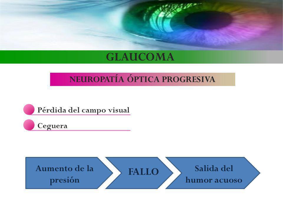 GLAUCOMA NEUROPATÍA ÓPTICA PROGRESIVA Pérdida del campo visual Ceguera Aumento de la presión FALLO Salida del humor acuoso