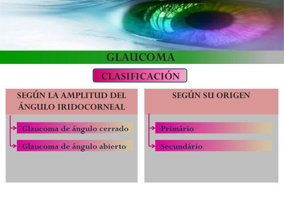 GLAUCOMA CLASIFICACIÓN SEGÚN LA AMPLITUD DEL ÁNGULO IRIDOCORNEAL -Glaucoma de ángulo abierto -Glaucoma de ángulo cerrado SEGÚN SU ORIGEN -Secundário -