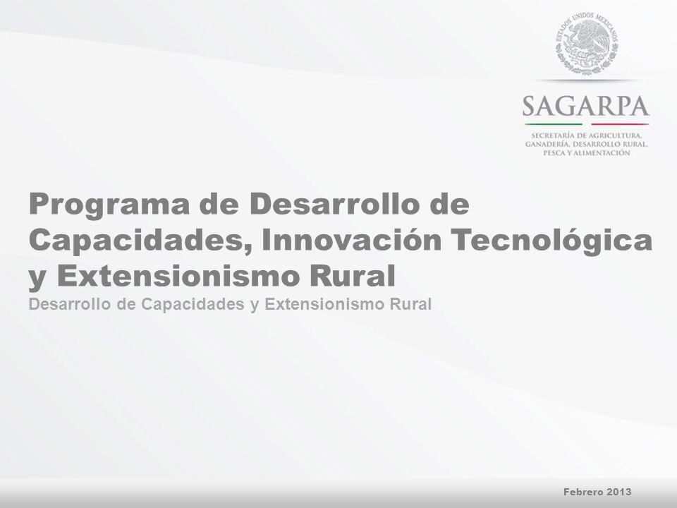 Programa de Desarrollo de Capacidades, Innovación Tecnológica y Extensionismo Rural Desarrollo de Capacidades y Extensionismo Rural Febrero 2013