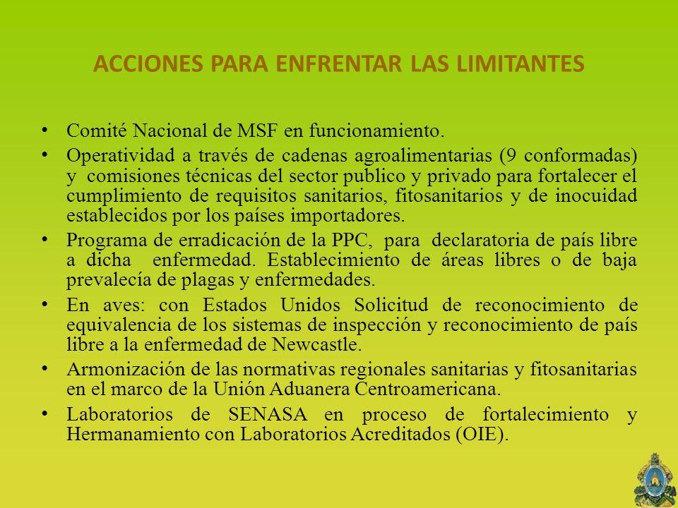 ACCIONES PARA ENFRENTAR LAS LIMITANTES Comité Nacional de MSF en funcionamiento. Operatividad a través de cadenas agroalimentarias (9 conformadas) y c