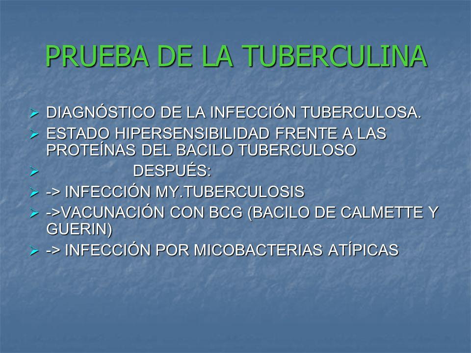 PRUEBA DE LA TUBERCULINA DIAGNÓSTICO DE LA INFECCIÓN TUBERCULOSA.