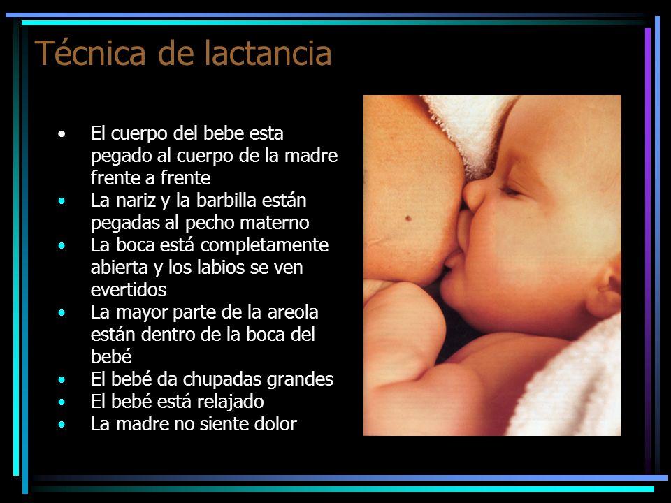 Técnica de lactancia El cuerpo del bebe esta pegado al cuerpo de la madre frente a frente La nariz y la barbilla están pegadas al pecho materno La boc