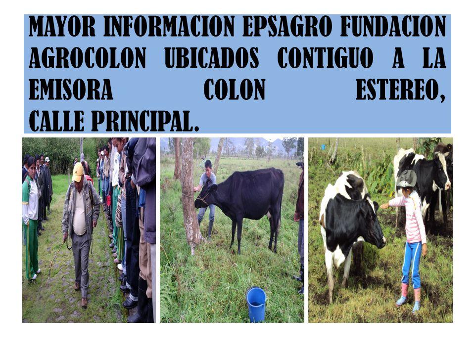PROYECTOS DE GESTIÓN AGROPECUARIA Proyecto de implementación de huertas caseras y especies menores, Municipio de Colón y Corregimiento de San Pedro. P