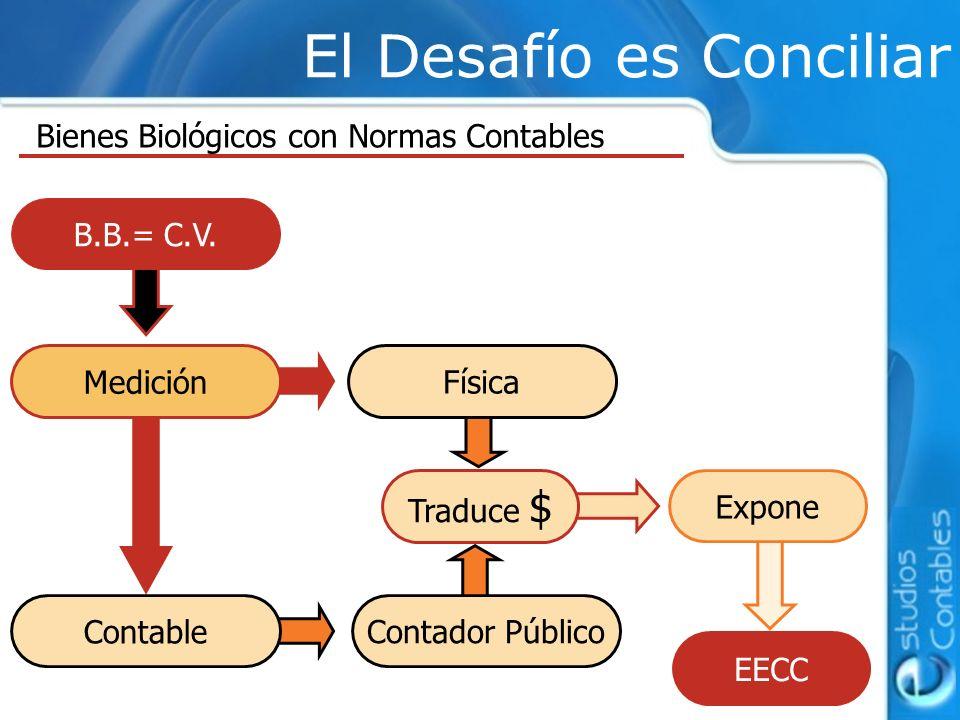 El Desafío es Conciliar Bienes Biológicos con Normas Contables B.B.= C.V.