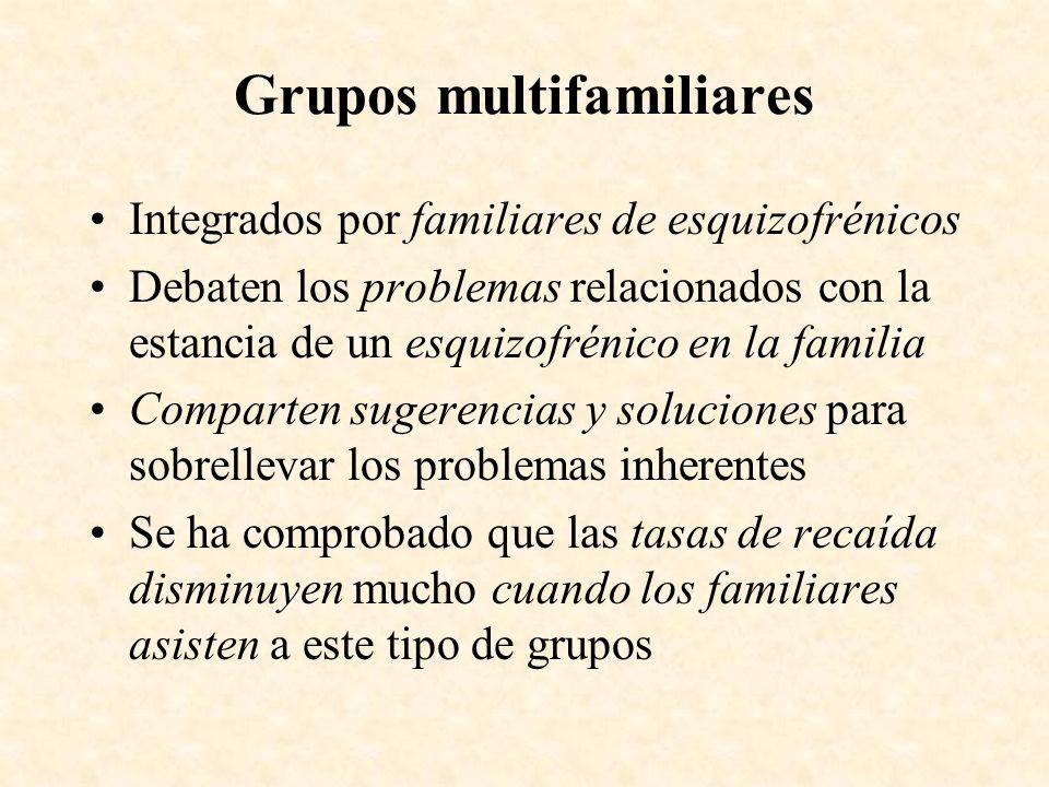 Grupos multifamiliares Integrados por familiares de esquizofrénicos Debaten los problemas relacionados con la estancia de un esquizofrénico en la fami