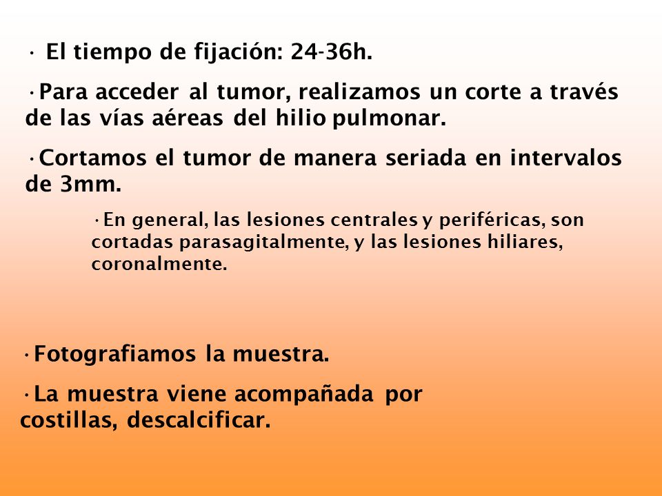 El tiempo de fijación: 24-36h. Para acceder al tumor, realizamos un corte a través de las vías aéreas del hilio pulmonar. Cortamos el tumor de manera