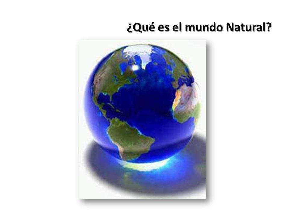 ¿Qué es el mundo Natural?