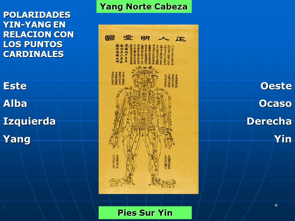 6 Yang Norte Cabeza EsteAlbaIzquierdaYangOesteOcasoDerechaYin Pies Sur Yin POLARIDADES YIN-YANG EN RELACION CON LOS PUNTOS CARDINALES
