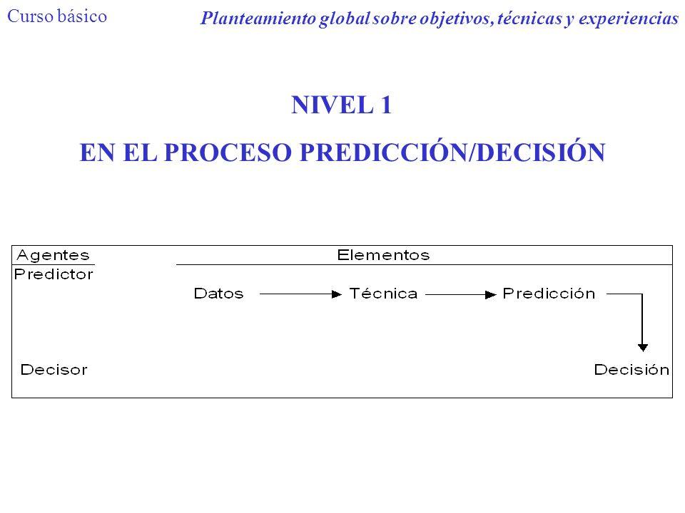 NIVEL 1 EN EL PROCESO PREDICCIÓN/DECISIÓN Curso básico Planteamiento global sobre objetivos, técnicas y experiencias