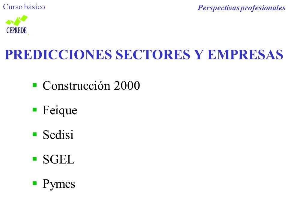 PREDICCIONES SECTORES Y EMPRESAS Construcción 2000 Feique Sedisi SGEL Pymes Perspectivas profesionales Curso básico