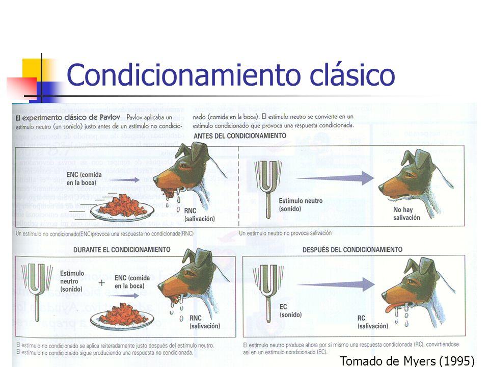 Condicionamiento clásico Tomado de Myers (1995)