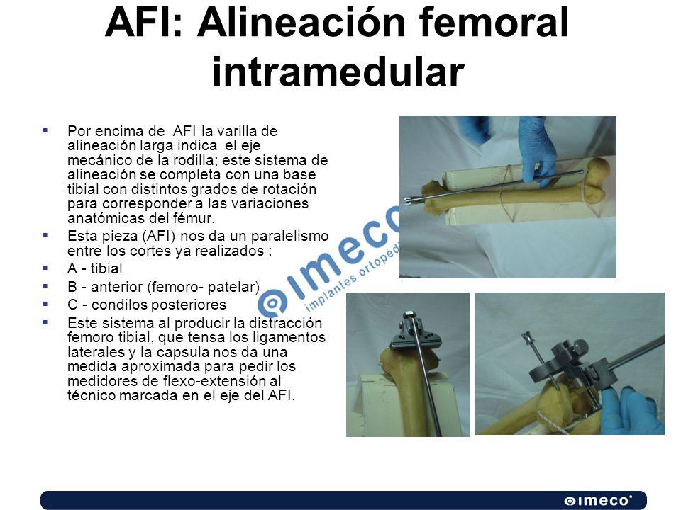 Por encima de AFI la varilla de alineación larga indica el eje mecánico de la rodilla; este sistema de alineación se completa con una base tibial con