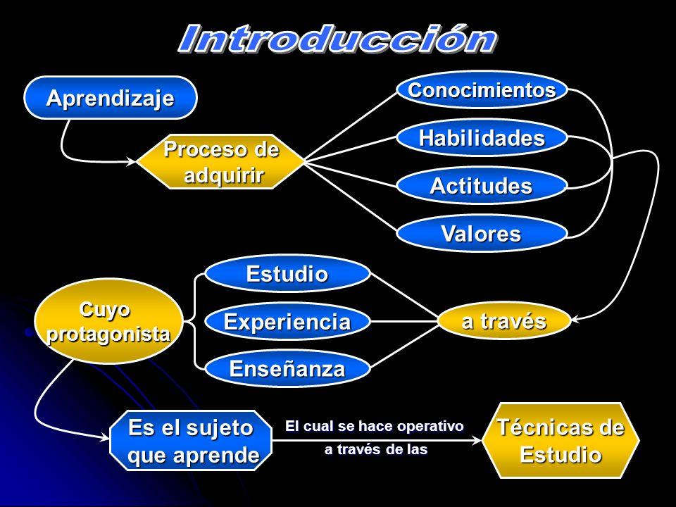 Conocimientos Habilidades Actitudes Proceso de adquirir adquirir Aprendizaje Valores Estudio Experiencia Enseñanza a través Cuyoprotagonista El cual s