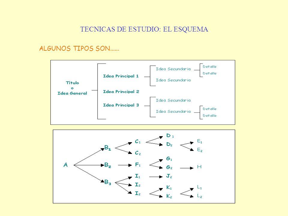 TECNICAS DE ESTUDIO: EL ESQUEMA ALGUNOS TIPOS SON......
