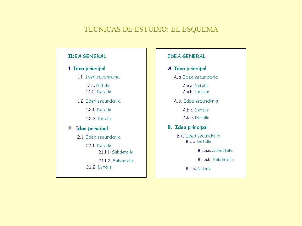 TECNICAS DE ESTUDIO: EL ESQUEMA