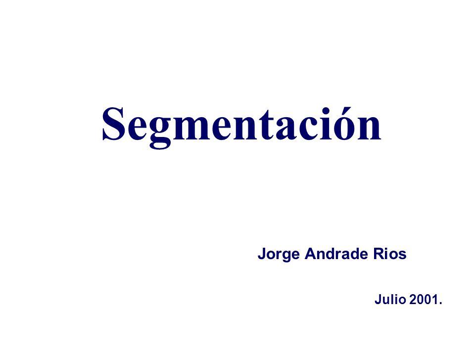 Segmentación Julio 2001. Jorge Andrade Rios