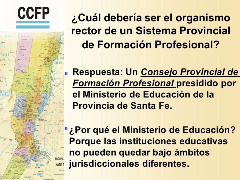 ¿Cuál debería ser el organismo rector de un Sistema Provincial de Formación Profesional.