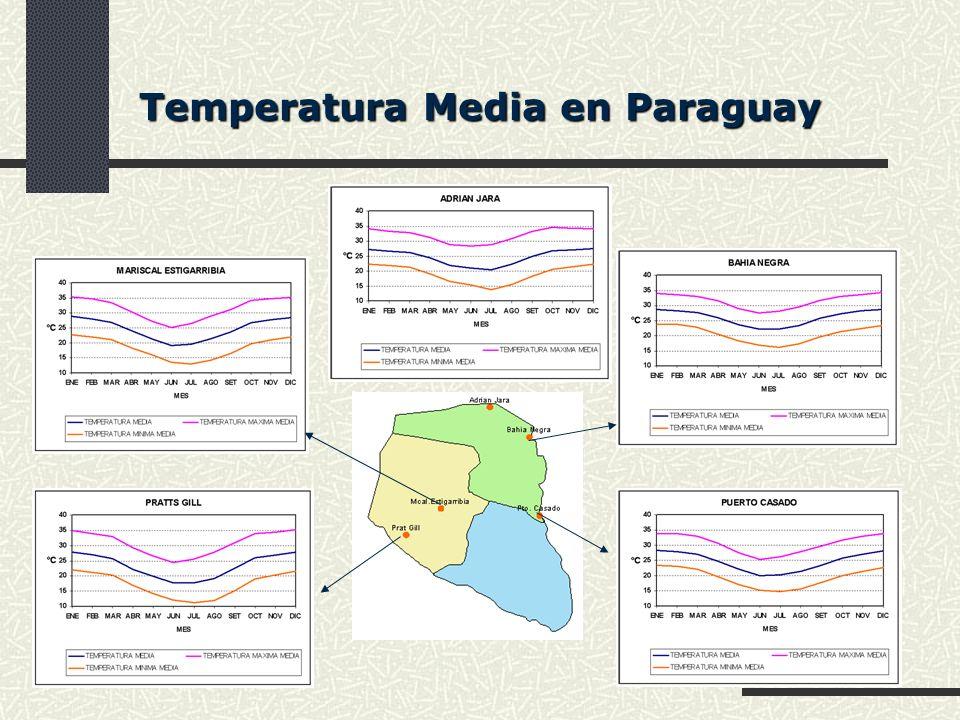 Temperatura Media en Paraguay