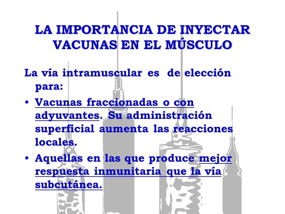 LA IMPORTANCIA DE INYECTAR VACUNAS EN EL MÚSCULO La vía intramuscular es de elección para: Vacunas fraccionadas o con adyuvantes. Su administración su