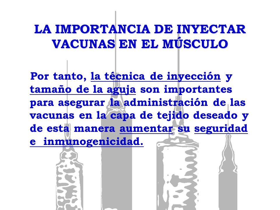 LA IMPORTANCIA DE INYECTAR VACUNAS EN EL MÚSCULO Por tanto, la técnica de inyección y tamaño de la aguja son importantes para asegurar la administraci