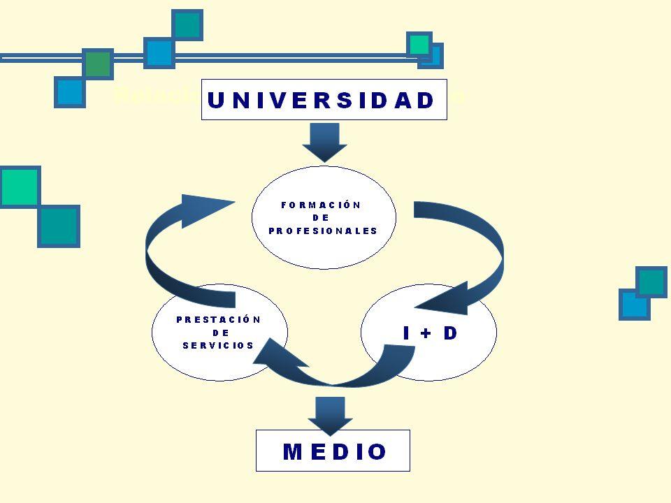 Relación universidad - medio