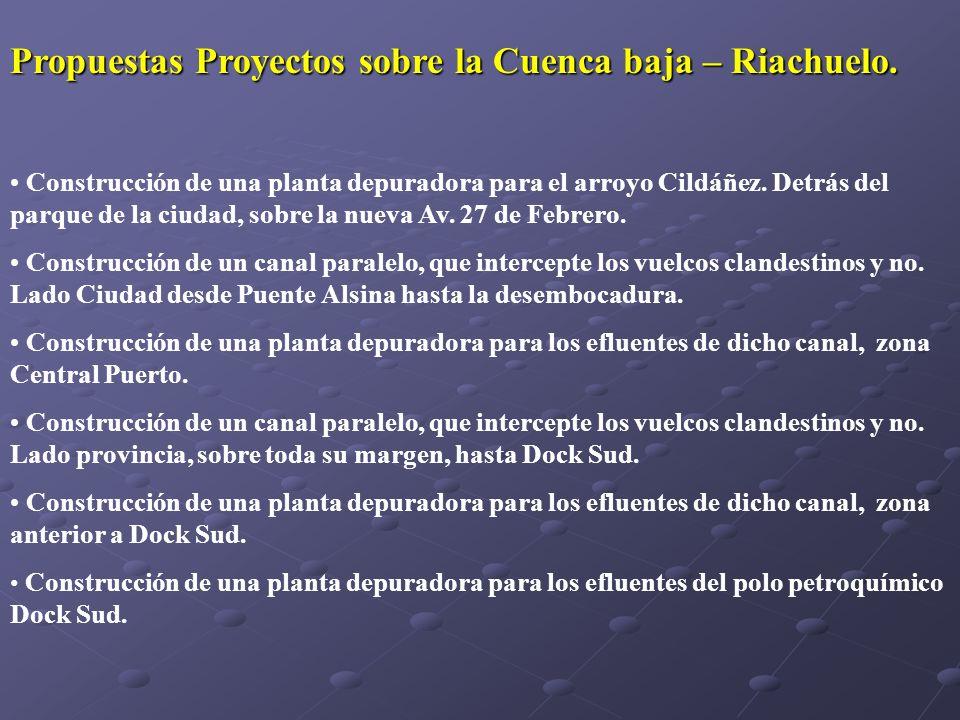 Propuestas Proyectos sobre la Cuenca baja – Riachuelo. Construcción de una planta depuradora para el arroyo Cildáñez. Detrás del parque de la ciudad,