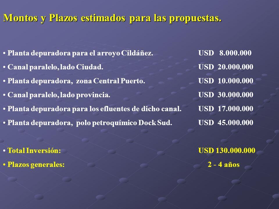 Montos y Plazos estimados para las propuestas. Planta depuradora para el arroyo Cildáñez. USD 8.000.000 Canal paralelo, lado Ciudad.USD 20.000.000 Pla