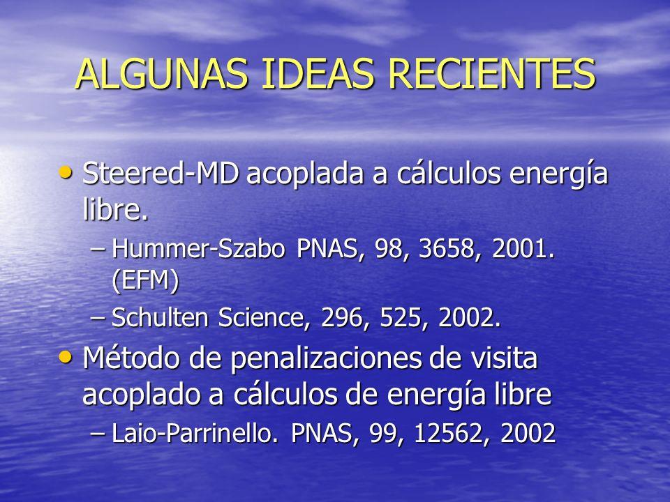 ALGUNAS IDEAS RECIENTES Steered-MD acoplada a cálculos energía libre. Steered-MD acoplada a cálculos energía libre. –Hummer-Szabo PNAS, 98, 3658, 2001