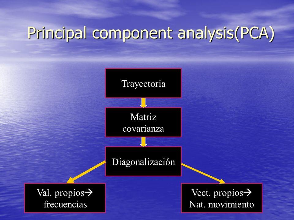 Principal component analysis(PCA) Trayectoria Matriz covarianza Diagonalización Val. propios frecuencias Vect. propios Nat. movimiento