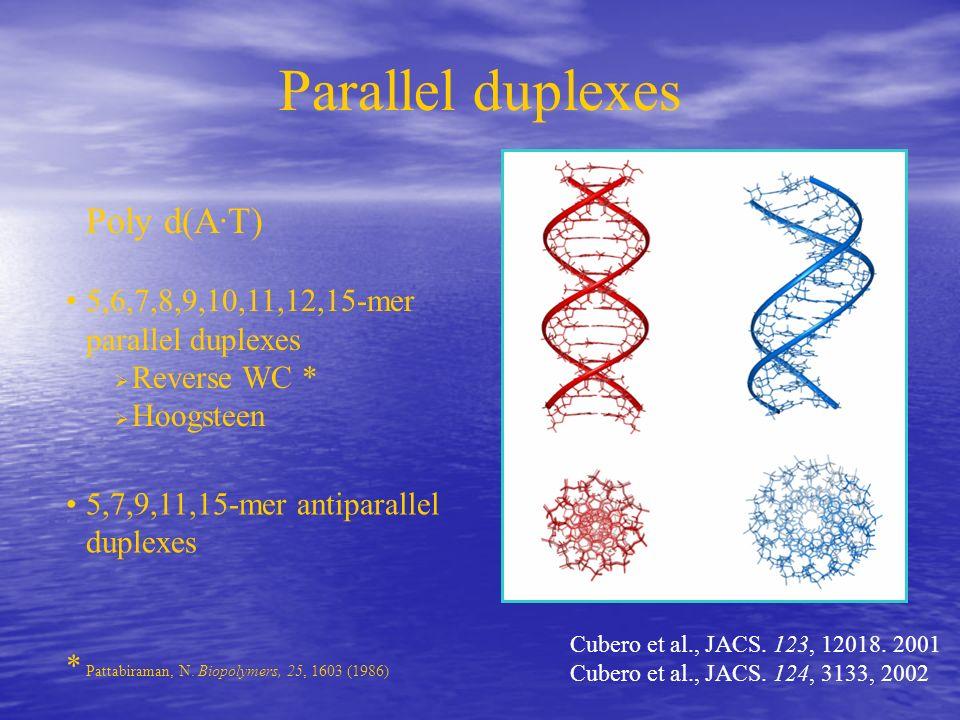 Parallel duplexes Poly d(A·T) 5,6,7,8,9,10,11,12,15-mer parallel duplexes Reverse WC * Hoogsteen 5,7,9,11,15-mer antiparallel duplexes * Pattabiraman,