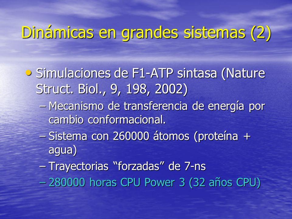 Dinámicas en grandes sistemas (2) Simulaciones de F1-ATP sintasa (Nature Struct. Biol., 9, 198, 2002) Simulaciones de F1-ATP sintasa (Nature Struct. B