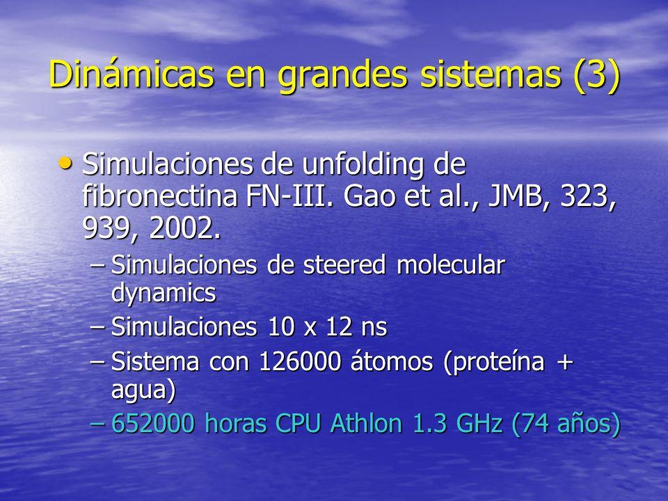 Dinámicas en grandes sistemas (3) Simulaciones de unfolding de fibronectina FN-III. Gao et al., JMB, 323, 939, 2002. Simulaciones de unfolding de fibr