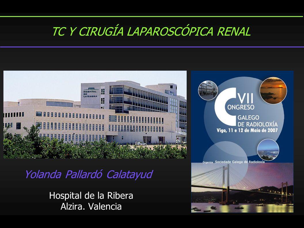 Yolanda Pallardó Calatayud Hospital de la Ribera Alzira. Valencia TC Y CIRUGÍA LAPAROSCÓPICA RENAL
