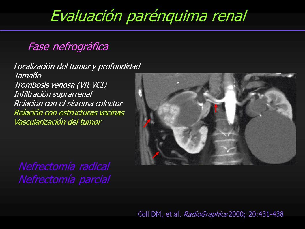 Evaluación parénquima renal Fase nefrográfica Localización del tumor y profundidad Tamaño Trombosis venosa (VR-VCI) Infiltración suprarrenal Relación