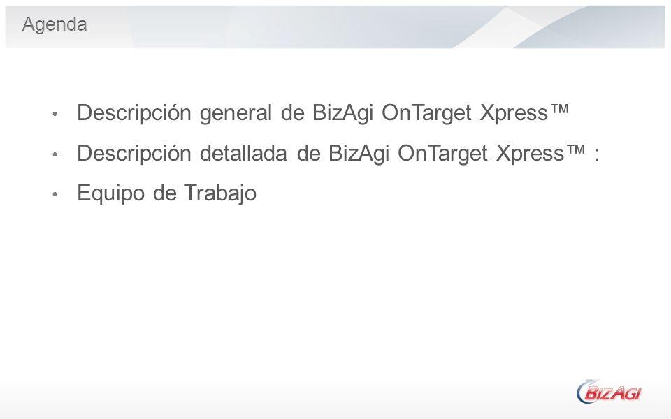 Descripción general de BizAgi OnTarget Xpress Descripción detallada de BizAgi OnTarget Xpress : Equipo de Trabajo
