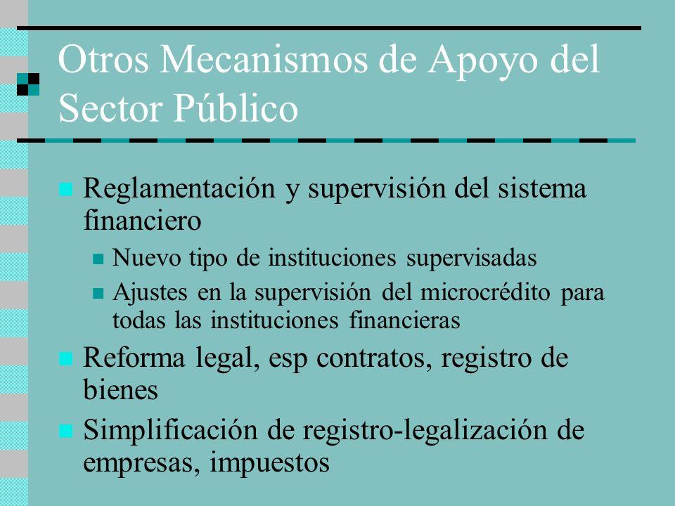 Otros Mecanismos de Apoyo del Sector Público Reglamentación y supervisión del sistema financiero Nuevo tipo de instituciones supervisadas Ajustes en l