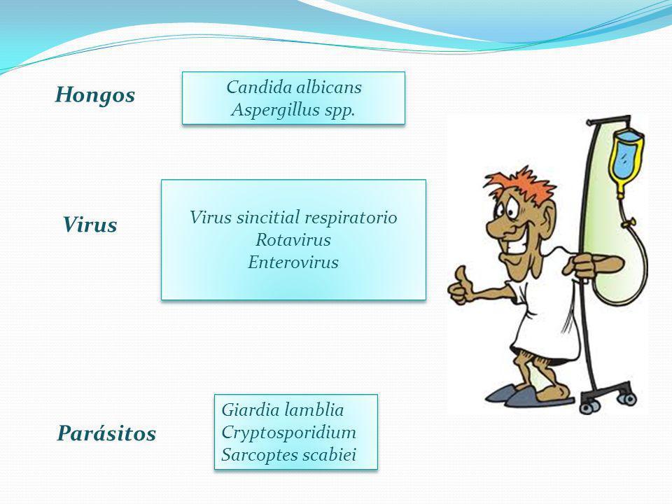 Hongos Candida albicans Aspergillus spp. Virus Virus sincitial respiratorio Rotavirus Enterovirus Parásitos Giardia lamblia Cryptosporidium Sarcoptes