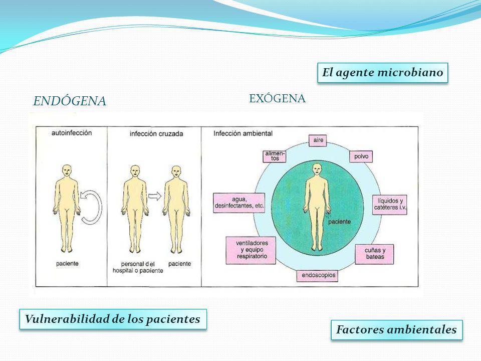 ENDÓGENA El agente microbiano Vulnerabilidad de los pacientes Factores ambientales EXÓGENA