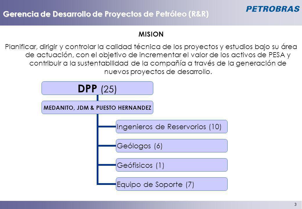 3 3 Gerencia de Desarrollo de Proyectos de Petróleo (R&R) MISION Planificar, dirigir y controlar la calidad técnica de los proyectos y estudios bajo s