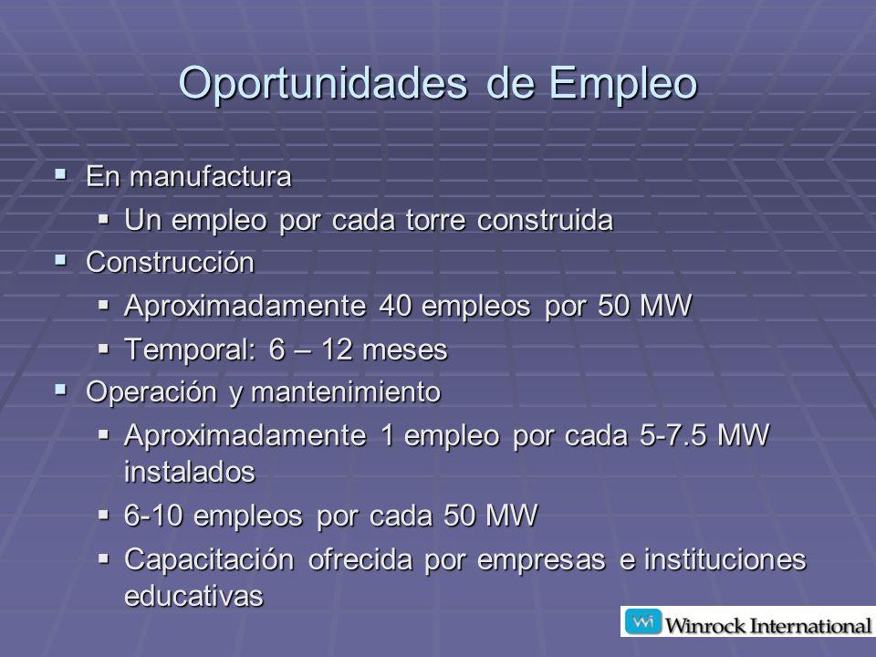 Oportunidades de Empleo En manufactura En manufactura Un empleo por cada torre construida Un empleo por cada torre construida Construcción Construcción Aproximadamente 40 empleos por 50 MW Aproximadamente 40 empleos por 50 MW Temporal: 6 – 12 meses Temporal: 6 – 12 meses Operación y mantenimiento Operación y mantenimiento Aproximadamente 1 empleo por cada 5-7.5 MW instalados Aproximadamente 1 empleo por cada 5-7.5 MW instalados 6-10 empleos por cada 50 MW 6-10 empleos por cada 50 MW Capacitación ofrecida por empresas e instituciones educativas Capacitación ofrecida por empresas e instituciones educativas